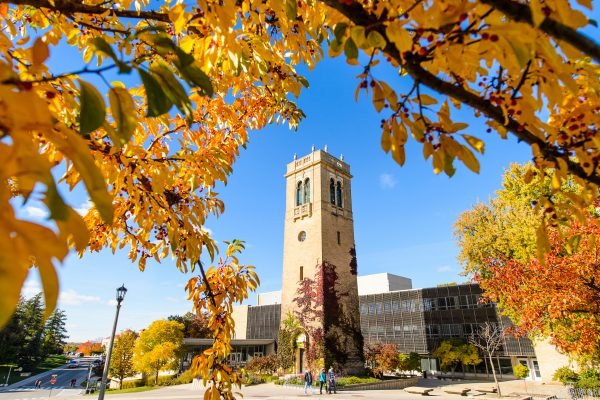 Pedestrians make their way past the Carillon Tower and the Sewell Social Sciences Building during autumn
