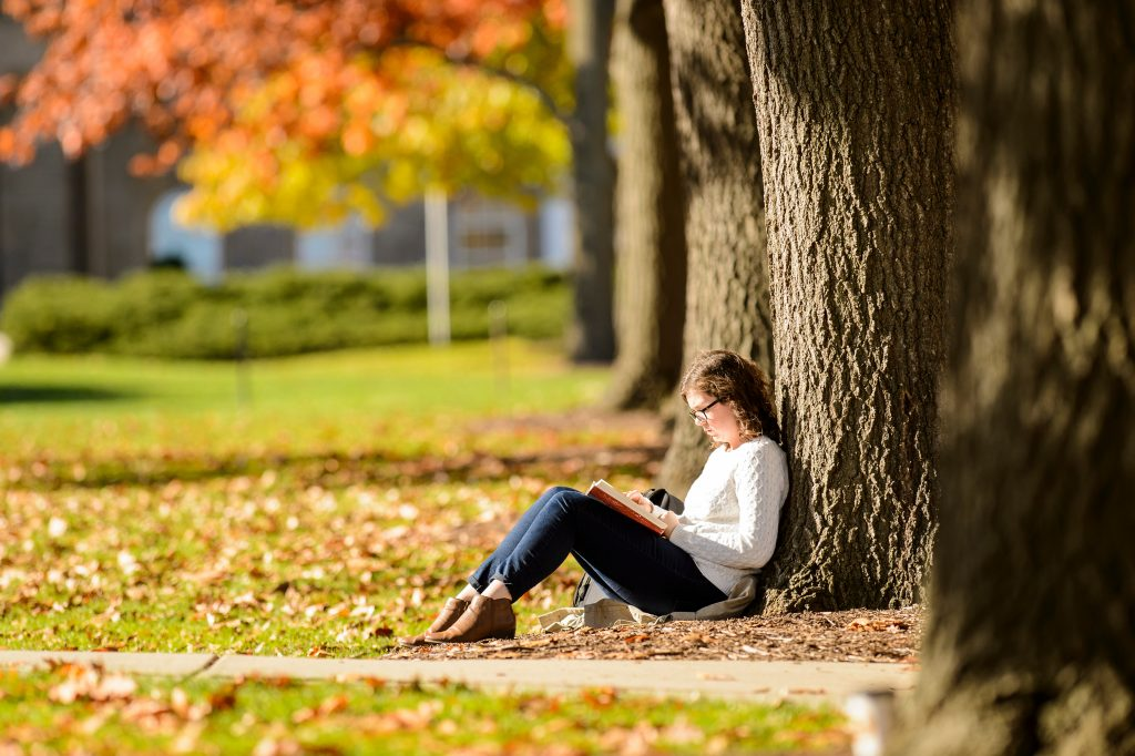 A student studies on a colorful tree-lined Bascom Hill in fall